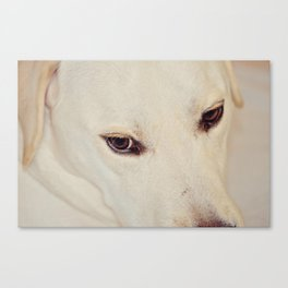 Eyes to the Soul Canvas Print