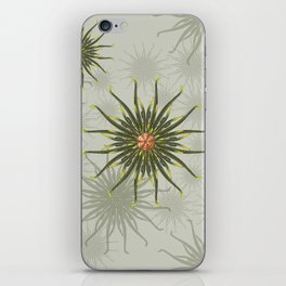 Wild Anemones iPhone Skin