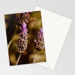 The real attraction   Bee and lavender   Nature Photography Stationery Cards