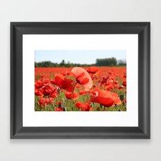 Red Poppy Field Framed Art Print