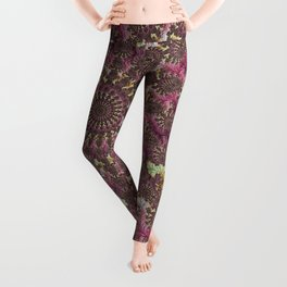 Spiral Fractal Leggings