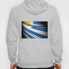 Flag of Uruguay Hoody