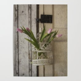 Pink Tulips in a white birdcag Poster