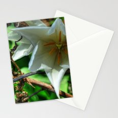 Flower - HDR Stationery Cards