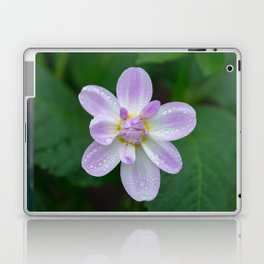Porcelain Dahlia With Dewdrops Laptop & iPad Skin