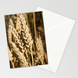 Breathe of nature Stationery Cards