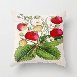 Strawberry Delights Vintage Botanical Floral Flower Plant Scientific Illustration Throw Pillow