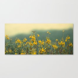 Flowerfield Canvas Print