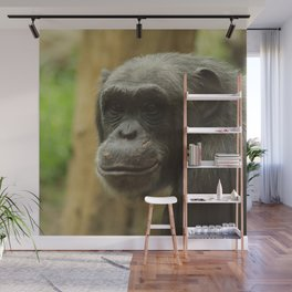 grinning chimp Wall Mural