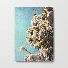 Cherry Blossom Blue Sky Metal Print