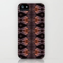 EarthAngles iPhone Case