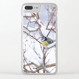 Winter Scene Blue Tit Snowy Branches Natural Background #decor #society6 #buyart Clear iPhone Case