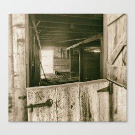 Through The Barn Doors Canvas Print