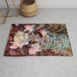Cluster of Roses covered in Frost Rug