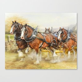 Clydesdales In Harness Canvas Print