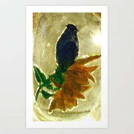 Blue Bird lights Art Print