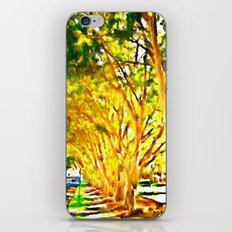 In Oatley, New South Wales iPhone & iPod Skin