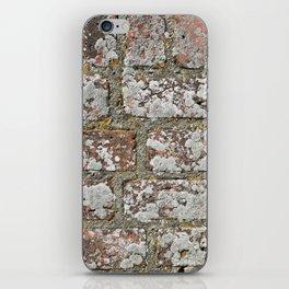 old wall bricks iPhone Skin