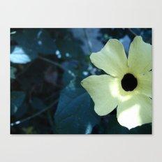 Flowers #13 Canvas Print
