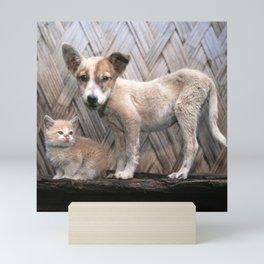 Papua New Guinea Village Puppy and Scruffy Kitten Mini Art Print