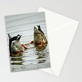 Duck Bums Stationery Cards