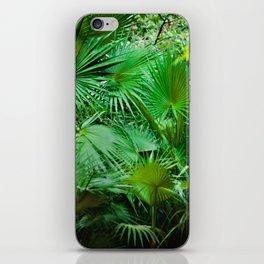 P A L M S iPhone Skin