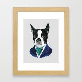 Boston Terrier Dog by Ryan Berkley Framed Art Print