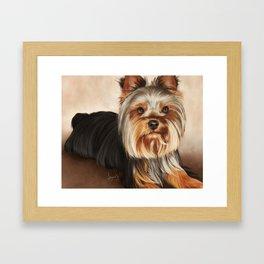 Yorkshire Terrier Painting Framed Art Print