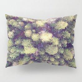 Aerial Wilderness Pillow Sham