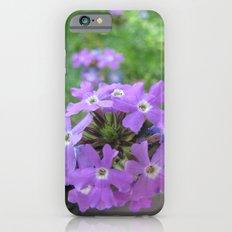 INDIA - Purple Flowers 2 iPhone 6s Slim Case