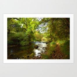 Millers Dale River Walk Art Print