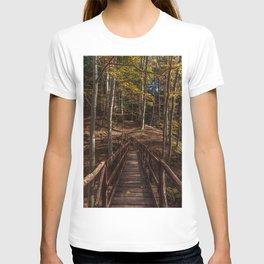 Wooden bridge crosses the forest lit by the autumn sun T-shirt