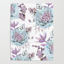 Turquoise and Violet Succulents Poster