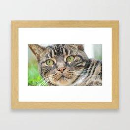 U Look PuuurrrrFect! Framed Art Print