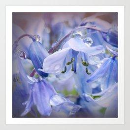 Bluebell Glade Art Print