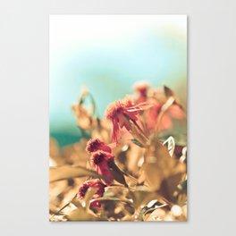 Summer Day Canvas Print