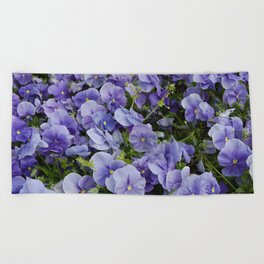 Pansy flower Beach Towel