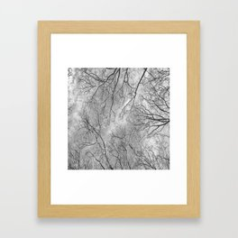 Trees are poems that earth writes upon the sky......K.Gibran Framed Art Print