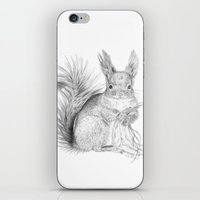 squirrel iPhone & iPod Skins featuring Squirrel by Ora Kolmanovsky