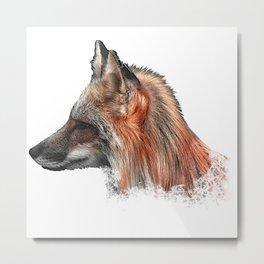 Fox portrait, animals, nature Metal Print