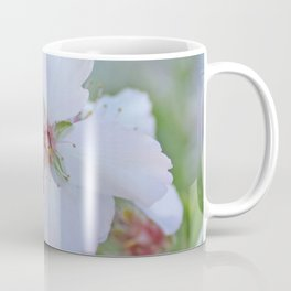 Almond tree flower blooming Coffee Mug