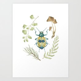Coleoptera beetle in the Forest Art Print