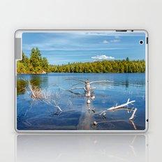 Smoke Lake Laptop & iPad Skin