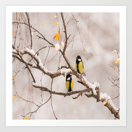 Lovely Songbirds on a Snowy Branch Art Print