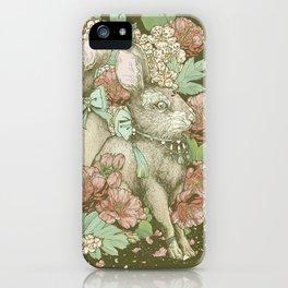 Yuè Tù (月兔) iPhone Case