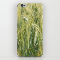 catcher in the rye iPhone & iPod Skins featuring Rye by BlueShadowM