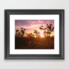 Riverside Weeds Framed Art Print