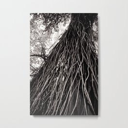 Roots of the Earth Metal Print