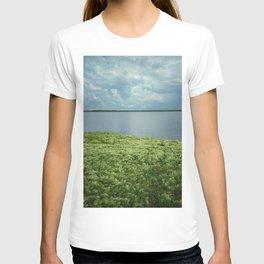 Summer on a village 2 T-shirt