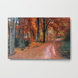 Abstract fall forest Metal Print